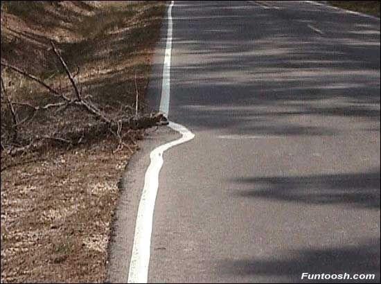 perfectie_road