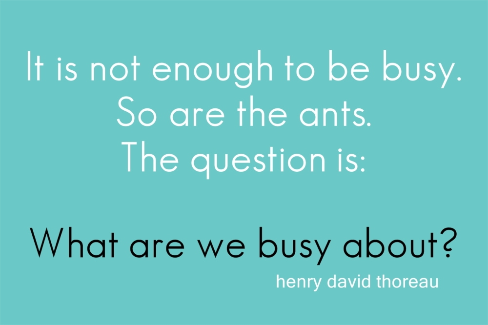 ants_busy